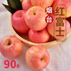 栖霞红富士苹果80#100斤起